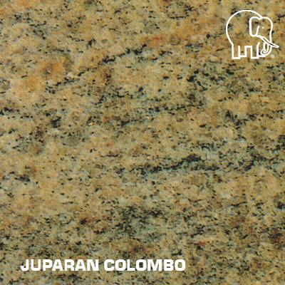 JUPARAN_COLOMBO