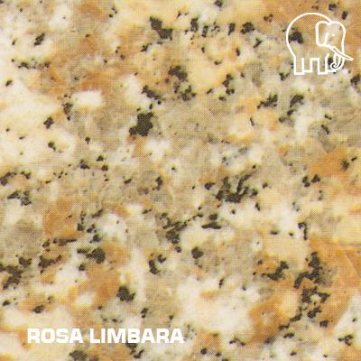 ROSA_LIMBARA